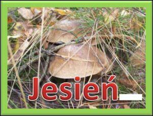 Zdjęcie z dwoma grzybami w trawie oraz napis Jesień